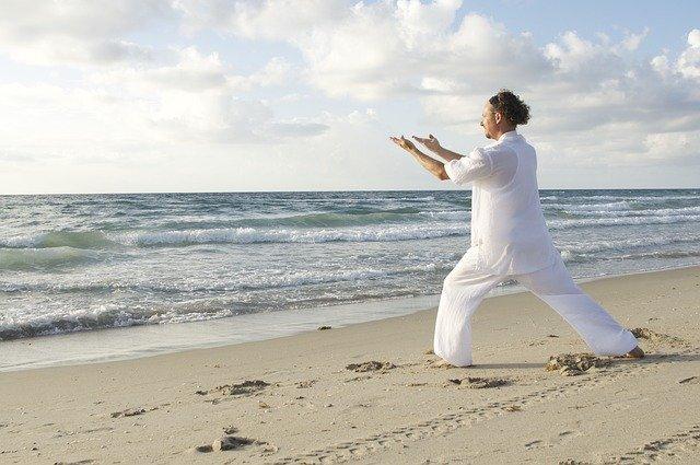 Le Tai Chi et l'etat meditatif